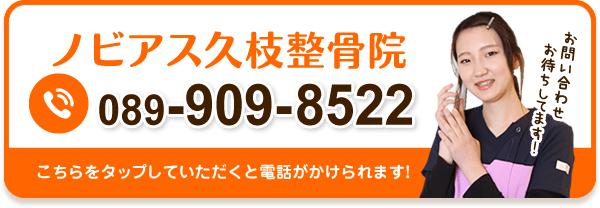 089-909-8522